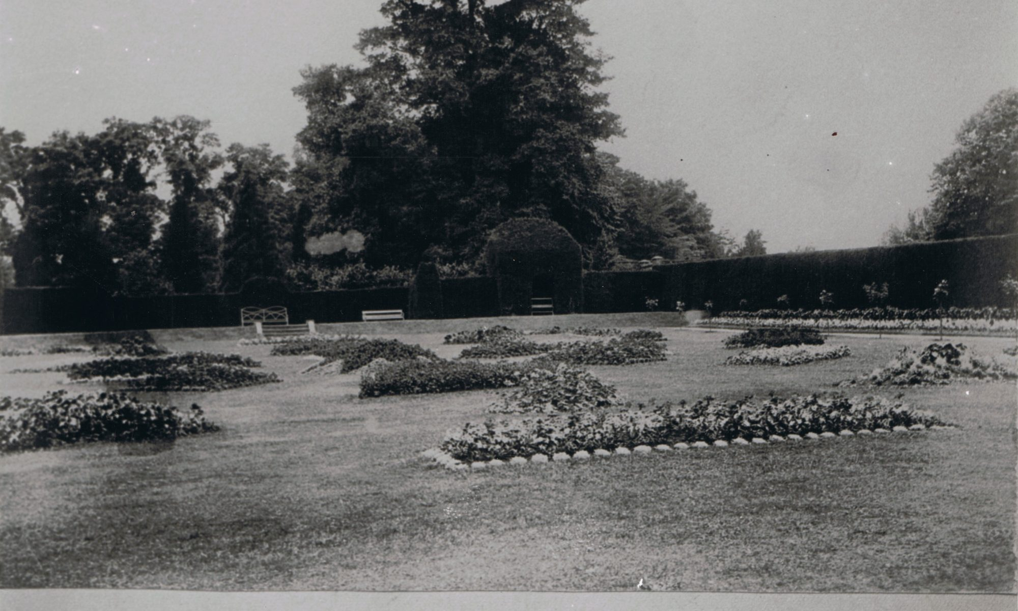 An Early Photograph of the Flower Garden