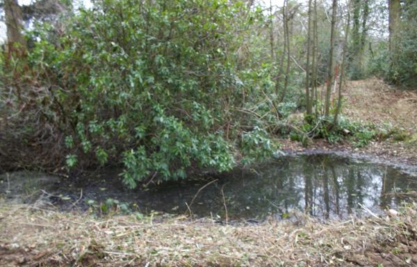 Lower Bath Pools Before Restoration