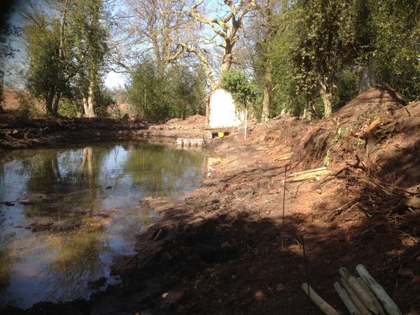 Bath Pools Initial Clearance Work