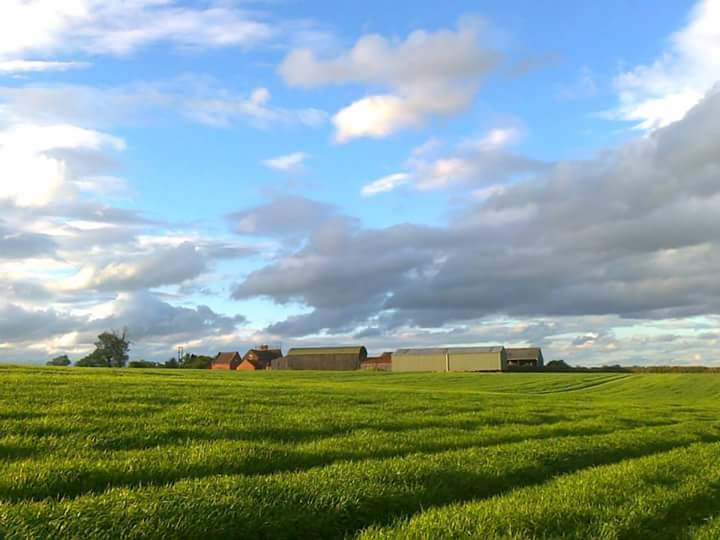 Hay Farm in Summer
